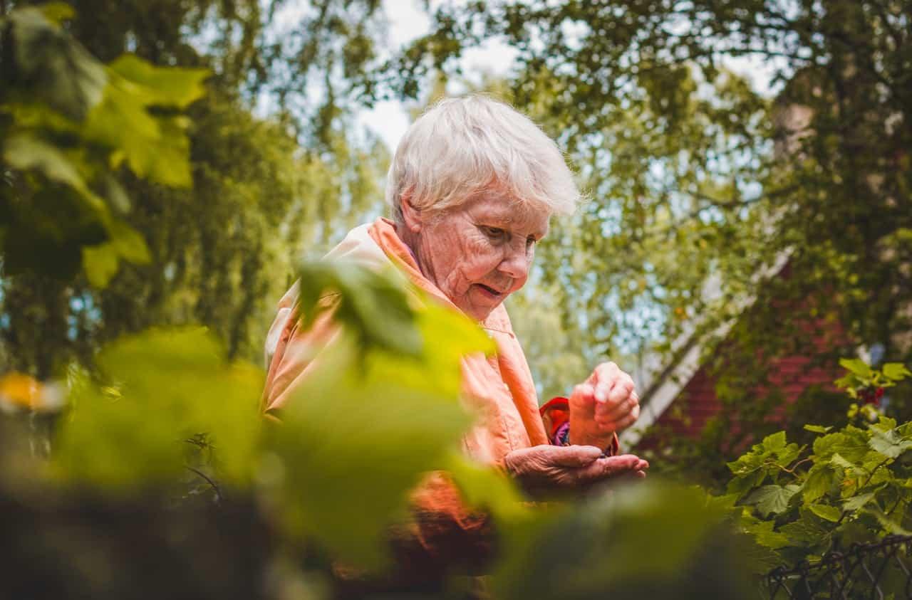Professional Elder Care Provider